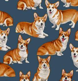 Pure Breed : Corgies