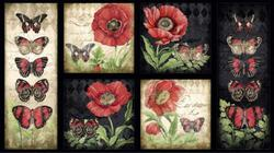 Harlequin Poppies : Panel