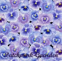 Pretty as a Pansy : Stedmoderblomster