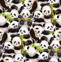 Panda Sanctuary - Packed Panda - Digital  print